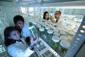 life sciences jobs in China