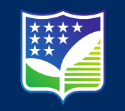 American English School Logo
